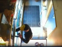 Python Thief Caught CCTV. You'll Never Guess What He Did With The Python, Though…